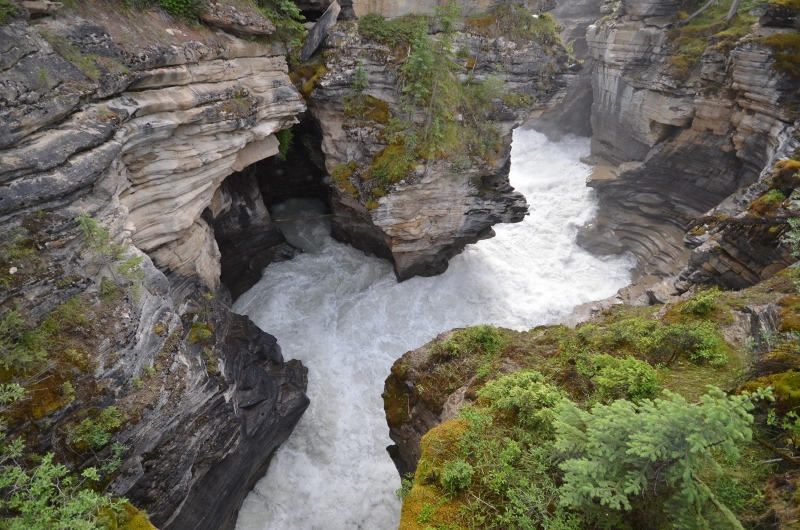 Athabasca river churning through the rocks