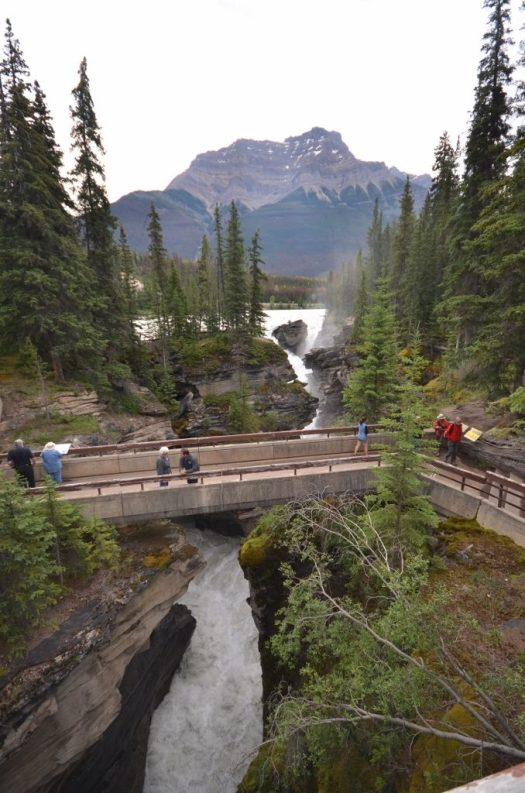 View of walkways over the Athabasca Falls