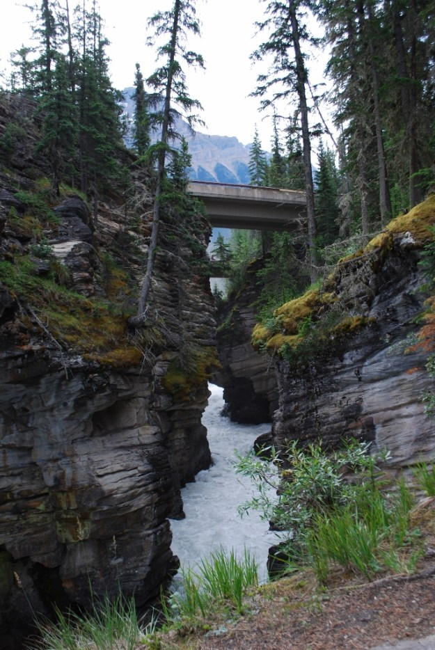 View of the roadway crossing the Athabasca Falls