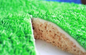 Grass covered rice krispies