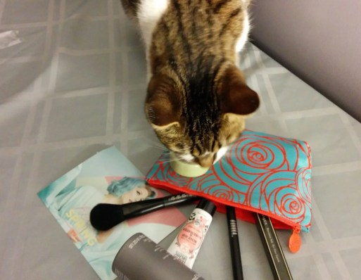 March 2016 Ipsy Glam Bag - Cat