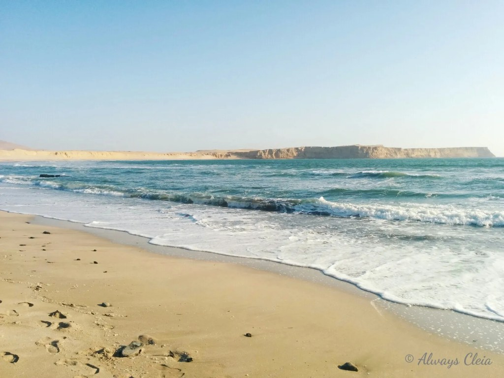 Paracas National Reserve Beaches