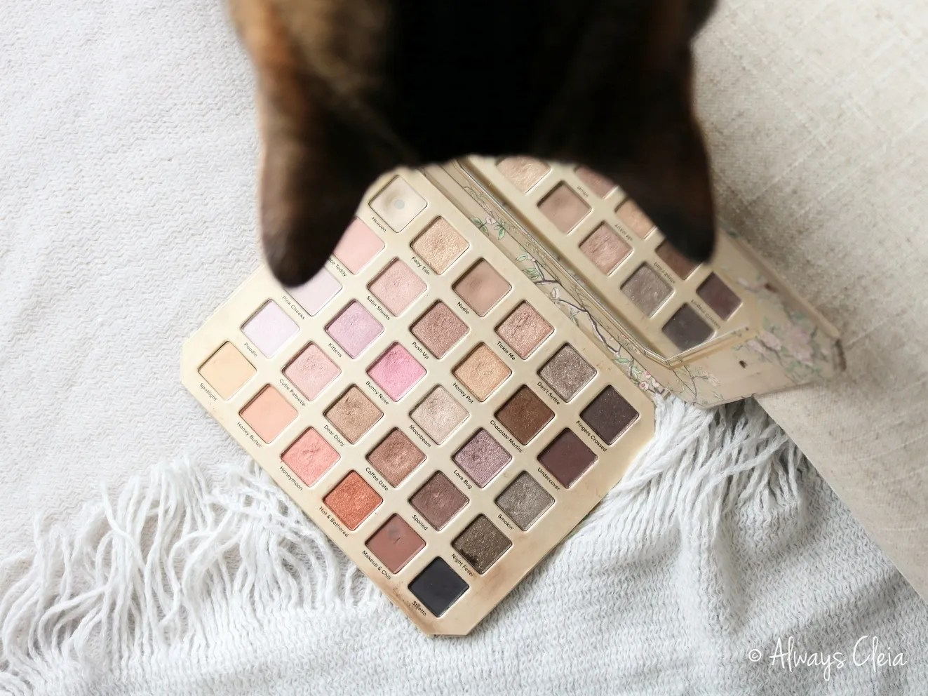 Too Faced Natural Love Palette Review | Packaging