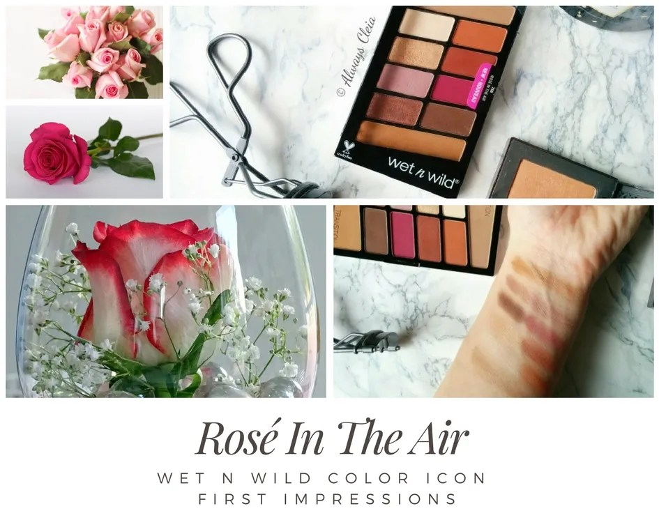 Wet N Wild Rosé In The Air Color Icon Palette First Impressions