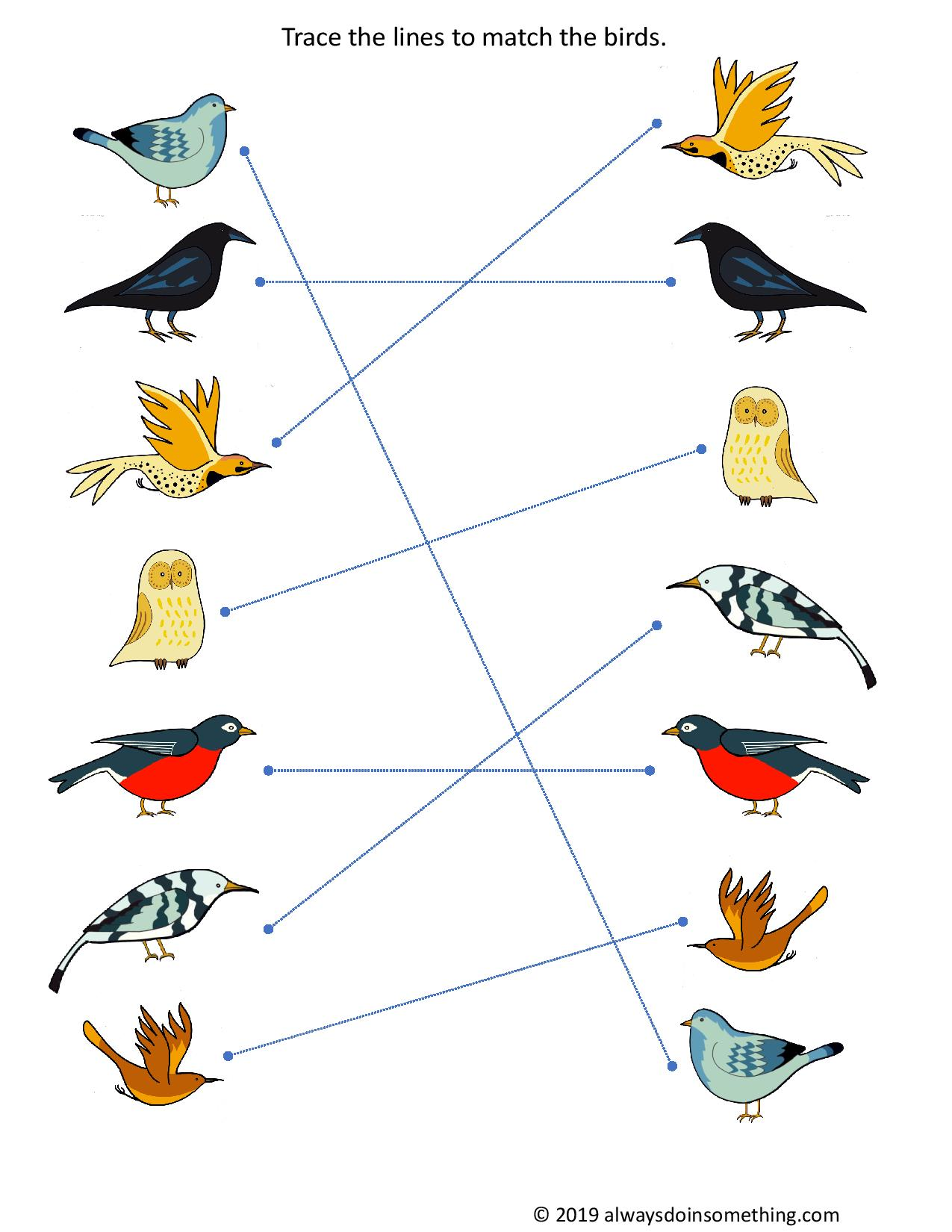 Free Preschool Printable Matching Birds Worksheets