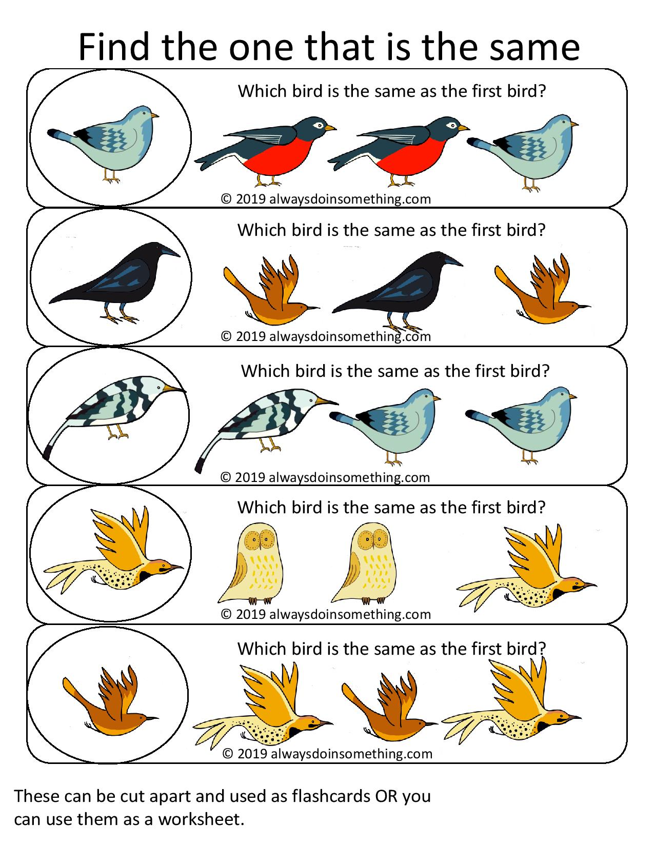 Free Preschool Printable Same And Different Birds Worksheets