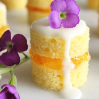 Mini Naked Cakes with Sweet Orange Marmalade