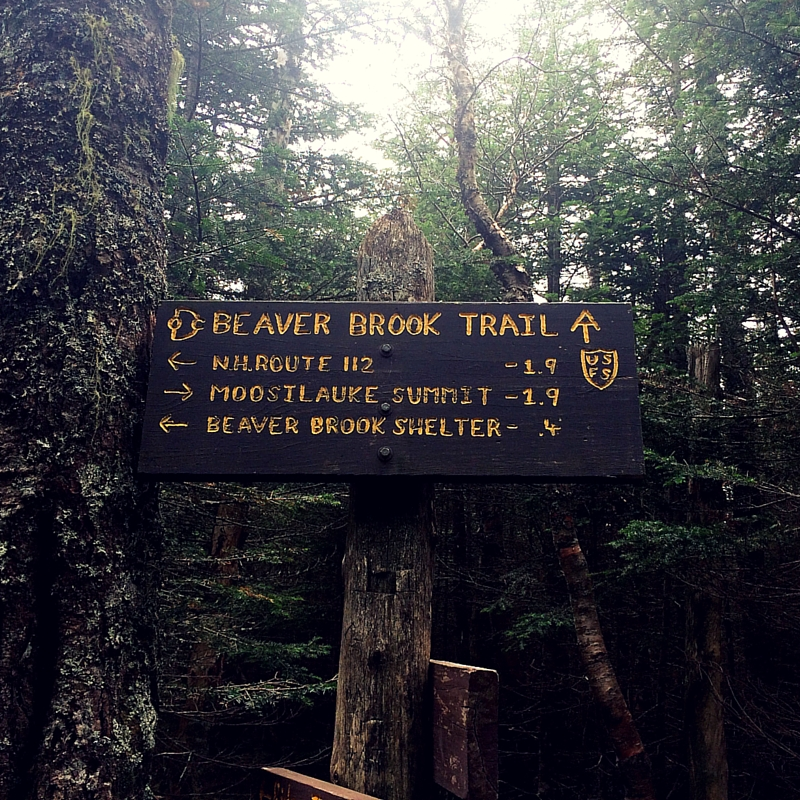 hiking mt. moosilauke - halfway point