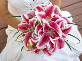 via www.weddingandpartynetwork.com