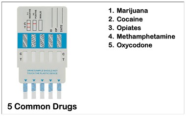6 Panel Drug Test To Test For Marijuana, Cocaine, Opiates, Meth and Oxycodone.
