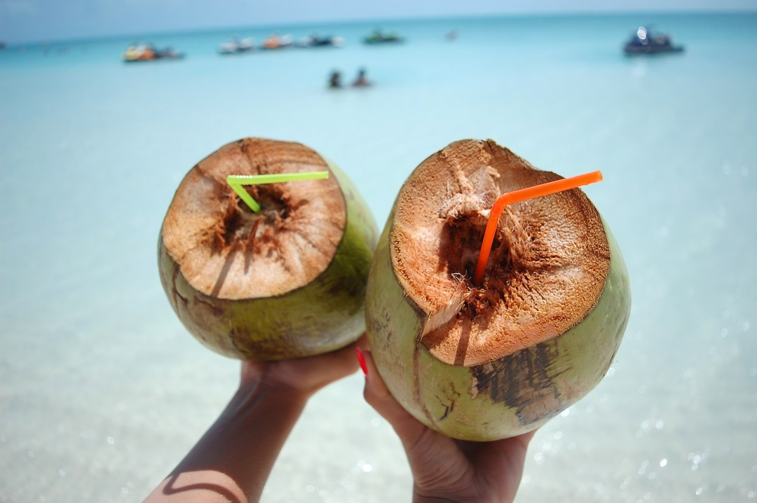 A2F Turks and Caicos Coconuts