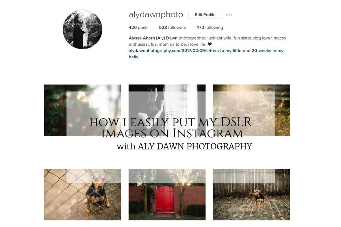 instagramfeed-copy