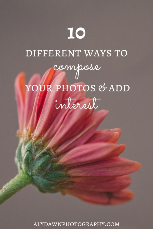10 Different Ways to Compose Your Photos & Add Interest