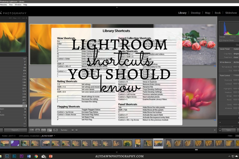 Lightroom Shortcuts You Should Know