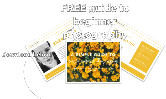 A Simple Guide to Beginner Photography