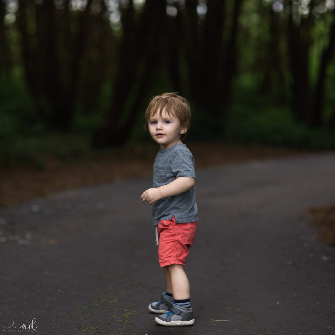 Aly Dawn Photography | Cute Toddler in Woods