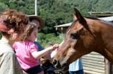 0657_NerkyGrrl_Horse