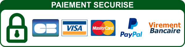 """Résultat de recherche d'images pour """"paiement sécurisé logo"""""""