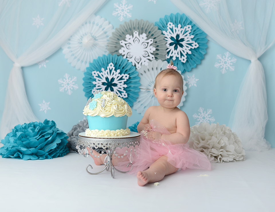 First Birthday Baby Pictures Cleveland Ohio Photographer
