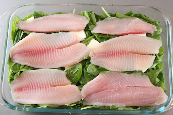 creamy-baked-tilapia-spinach-casserole-img_4901