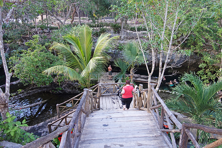 Gran Cenote in Tulum Beautiful Garden