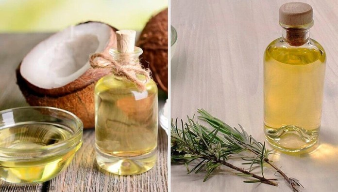 Rosemary-Oil-and-coconut-oil How to Use Coconut Oil for Dandruff