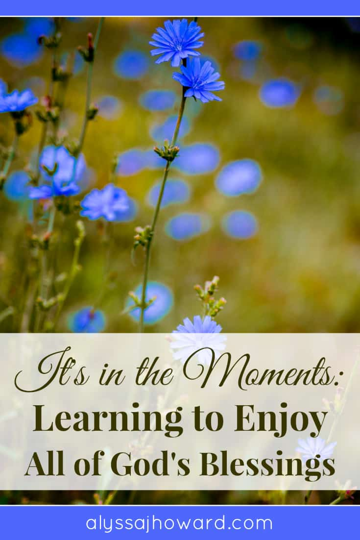 It's in the Moments: Learning to Enjoy All of God's Blessings | alyssajhoward.com