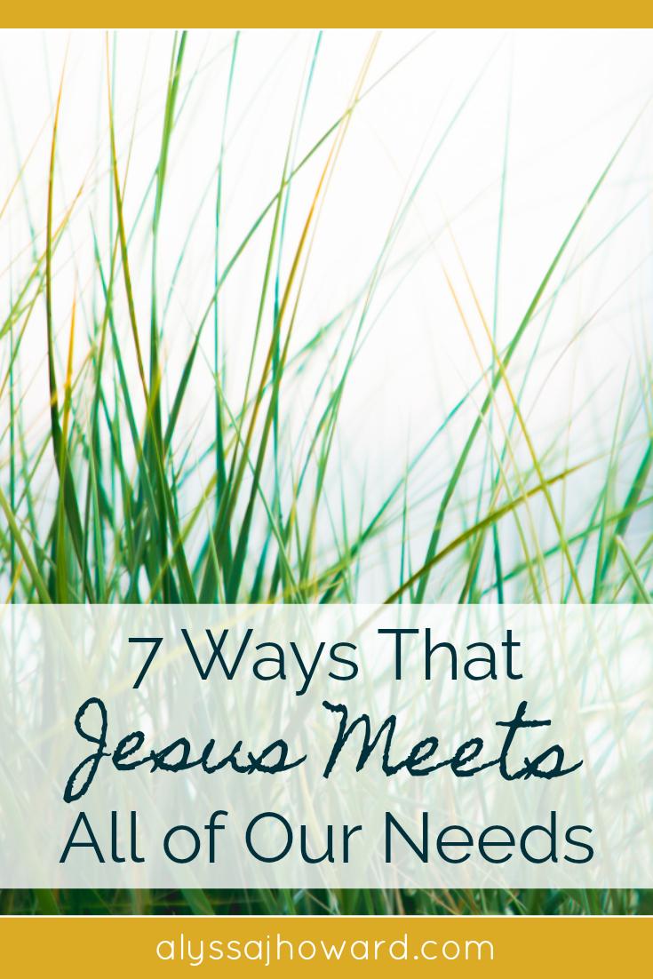 7 Ways That Jesus Meets All of Our Needs   alyssajhoward.com
