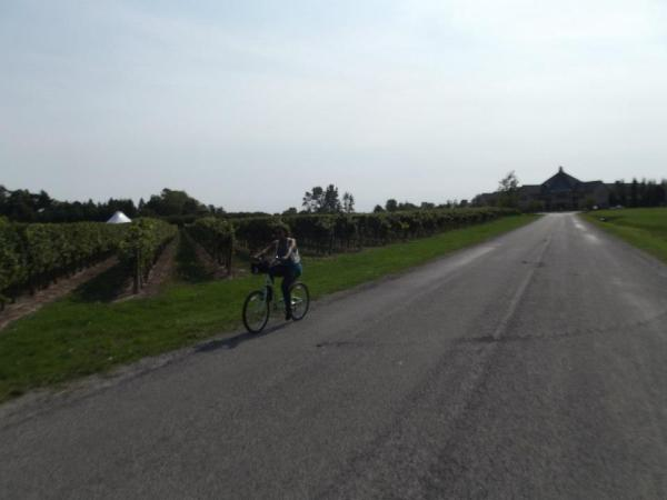 Cycling in Niagara-on-the-Lake