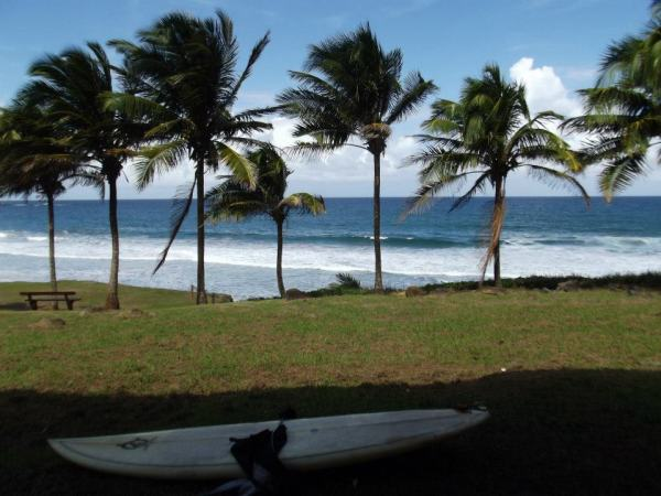 surf board, martinique, surfing in martinique, Anse Charpentier, Le Marigot