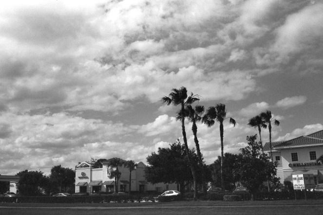 Leica M2 Arista EDU 400