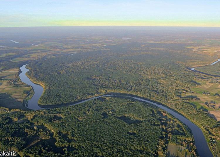 Europoje unikalus gamtos perlas Punios šilas įsitaisęs tarp Nemuno upės kilpų ir vingių / Renato Jakaičio nuotr.