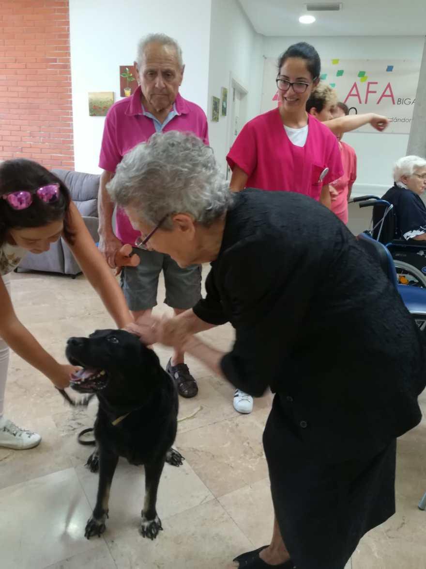 Taller interacción con animales Alzheimer