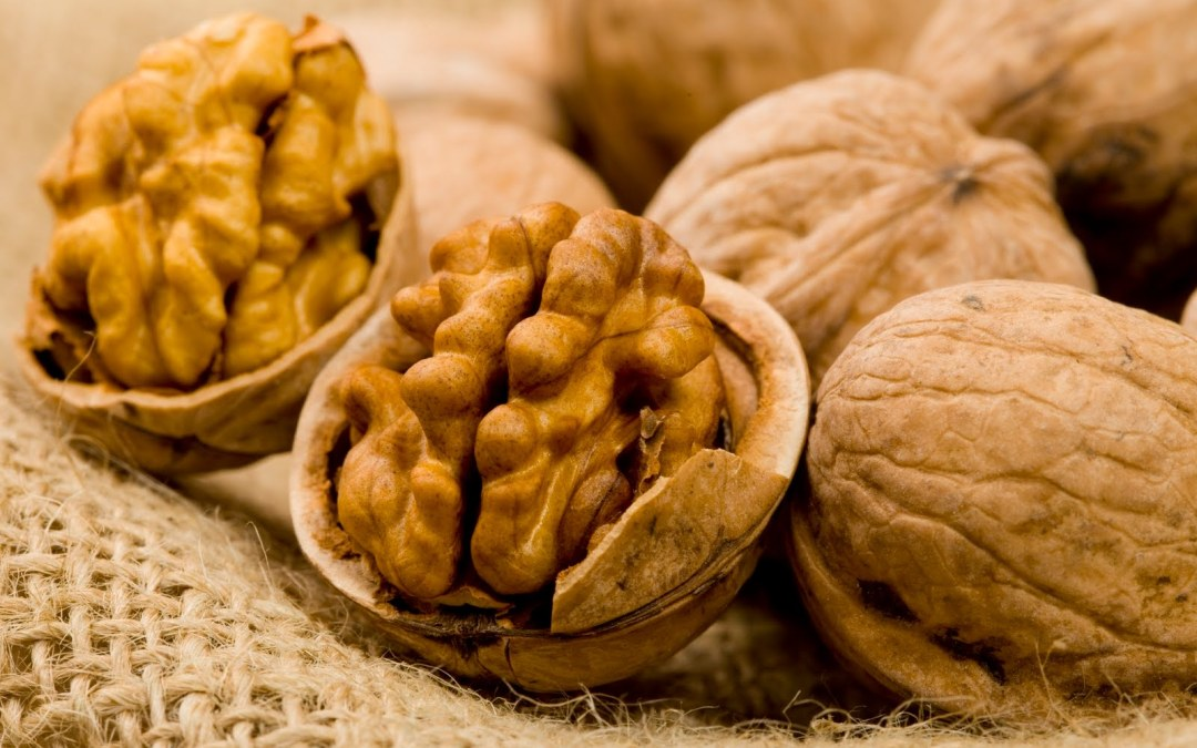 Walnuts Might Fight Alzheimer's Disease