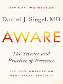 Aware The Science and Practice of Presence