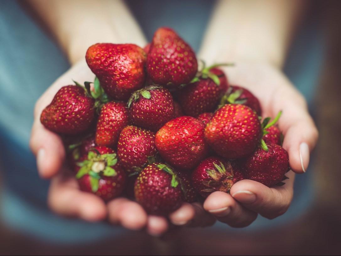 Erdbeeren_Bucket-List