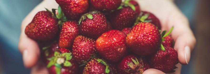Erdbeeren_Mama_Bucket-List