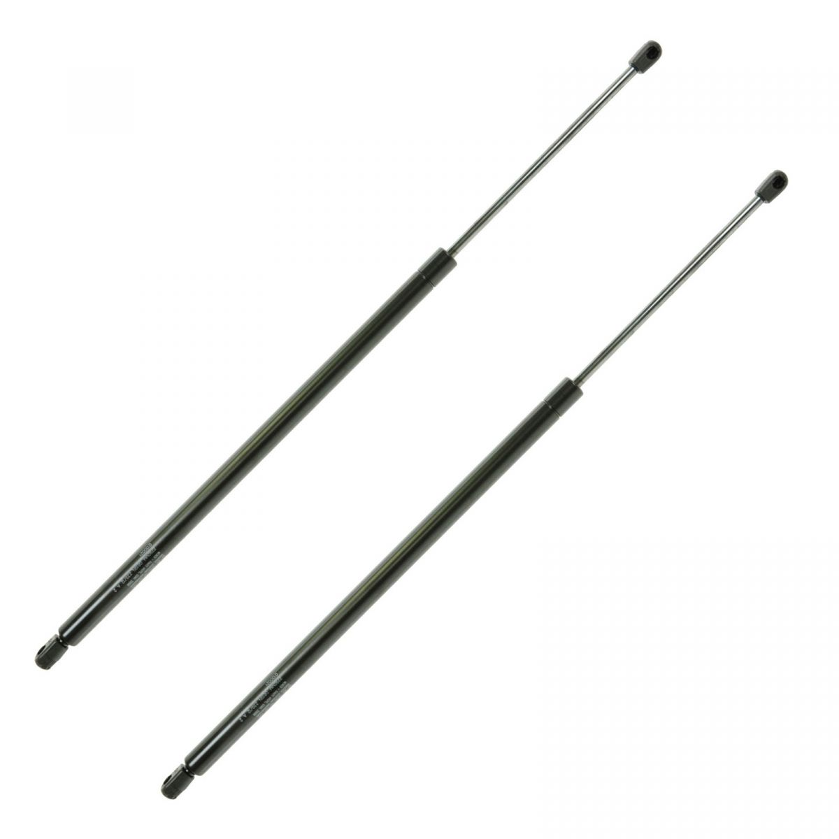 Tailgate Lift Supports Shock Struts Pair Set Kit for Buick