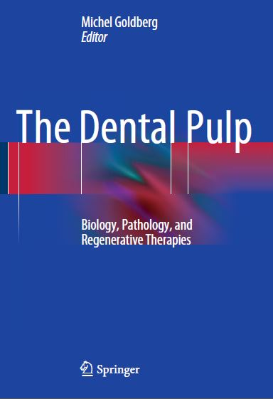 The Dental Pulp PDF