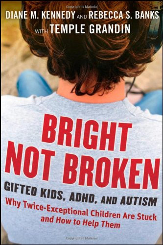 Bright Not Broken PDF