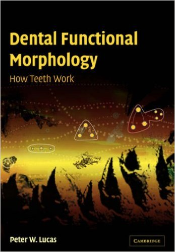 Dental Functional Morphology PDF
