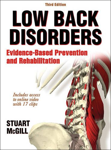 Low Back Disorders PDF