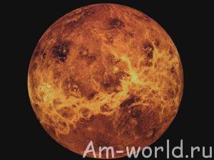 Есть ли жизнь на Венере