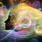 Откуда разум в нашем мозге