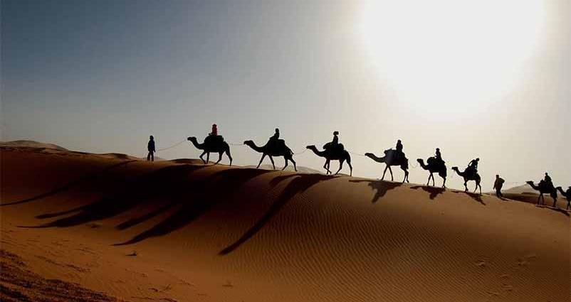 По зыбучим пескам не пройдет караван
