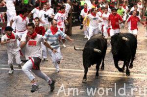 Смертельная схватка быка и человека