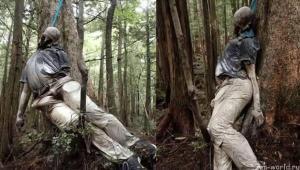 Лес Аокигахары - излюбленное место самоубийц