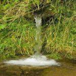 Чудесная сила родниковой воды