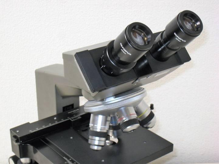 Микроскопы для ЭКО: особенности и виды