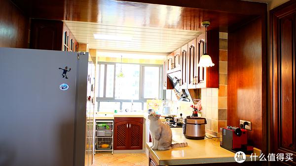 granite top kitchen cart kraft cabinets 美式厨房餐厅装修 装修经验分享 什么值得买 梦里的厨房 与猫